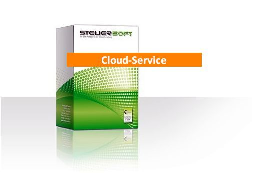 Steuersoft-Cloud I_ professional (Backup Sicherung)